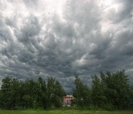 Wolken am Himmel: (23.7.2011)