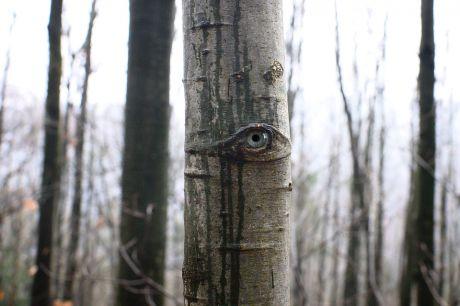 Überall nurGesichter und Augen