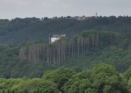 Haus Hohenscheid vom Pfaffenberg aus gesehen: (Juni 2012)
