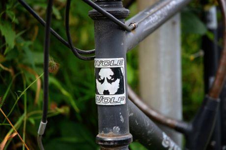 Der Wolf: im Fahrrad