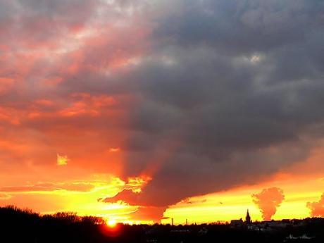 Der Sonne entgegen: 30.11.2009, 16:38 Uhr  - (c)2009, NoMe