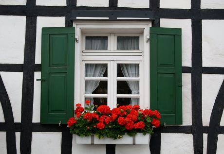 Fachwerk und Fenster: schwarz, weiß, rot, grün