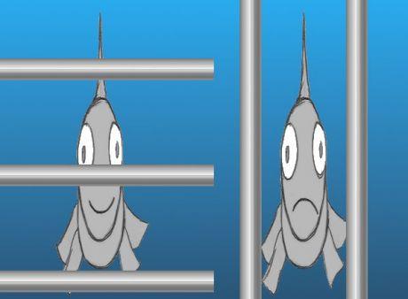 horizontales versus vertikales Rechen