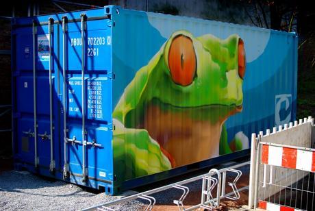 der Frosch als Graffito