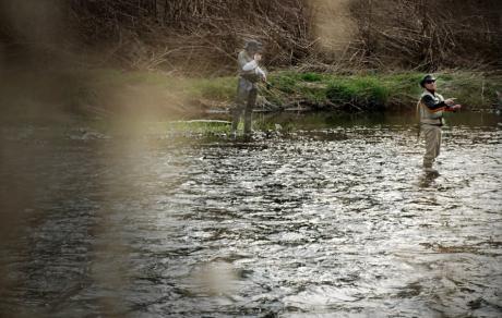 Fußgänger in der Wupper: die die Fische hegen und pflegen
