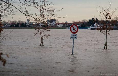 Grillen verboten !: Schiffen noch nicht, aber nur in der Flussmitte!