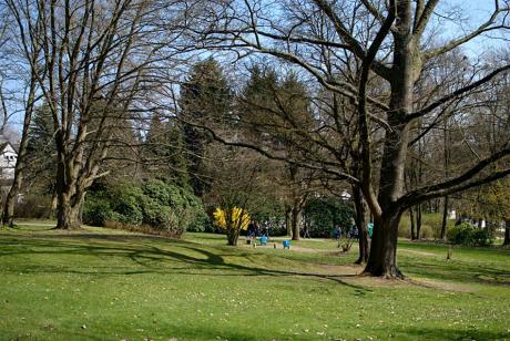 Gustav-Coppel-Park: noch etwas winterkahl.