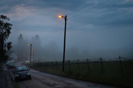 Pfaffenberger Weg im abendlichen Nebel