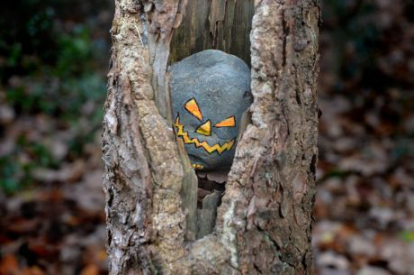 Halloween-Stonie