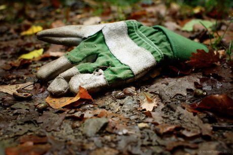 Handschuh, der ordinäre