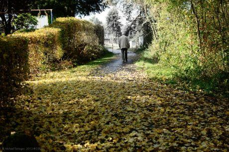 Noch einmal dem Herbst entwichen