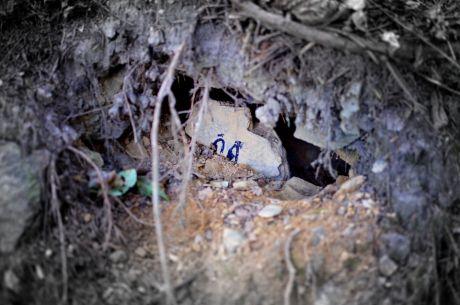 Höhlenbesetzer