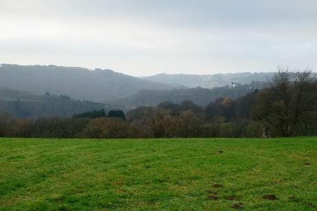 Haus Hohenscheid (12.12.2013): Die Natur hat mal wieder auf die Pause-Taste gedrückt
