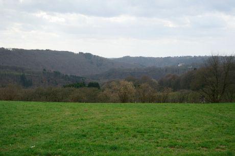 Haus Hohenscheid (15.03.2014): nach längerer Pause mal wieder etwas Feuchtigkeit von oben
