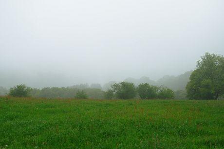 Haus Hohenscheid (29.04.2014): Nebel im Tal und auf der Höhe
