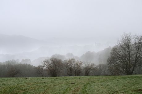 Die Burg kriecht aus dem Nebel