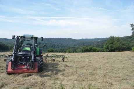 Landwirt Yz...: wendet das Heu