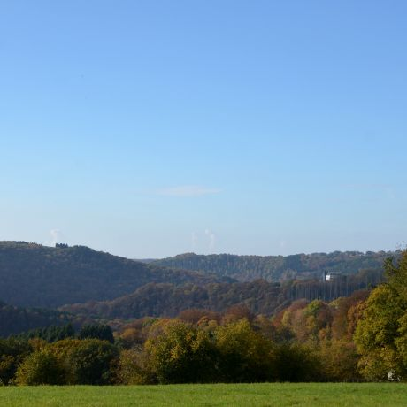 Hohenscheid am 30. Oktober 2016: Sonntag, güldener Oktobertag bei 14°C