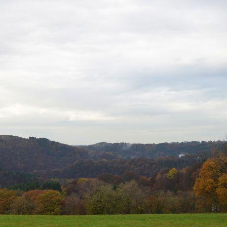 Hohenscheid am 17. November 2016: Donnerstag, bei +10°C