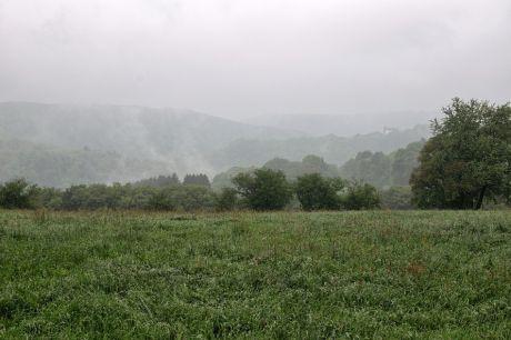Haus Hohenscheid (20.05.2013): Nebel, Regen +12°C