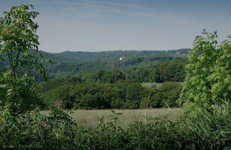 Blick auf Burg Hohenscheid vom Pfaffenberg: im Mai 2012