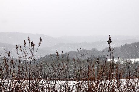 Hohenscheid im Wintermantel