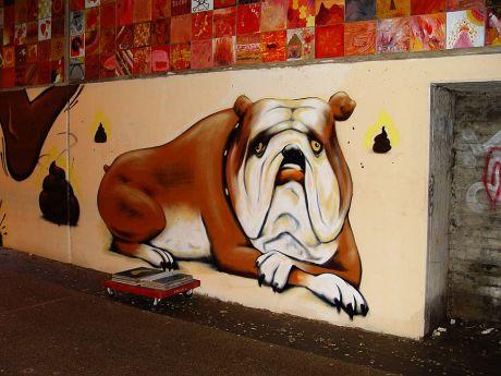 Der Hund an der Wand
