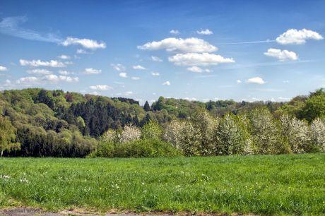 Blick auf die Burger Landstraße vom Pfaffenberg aus: im Tal fließt der Bertramsmühler Bach gen Strohn, um dort die Wupper aufzufüllen