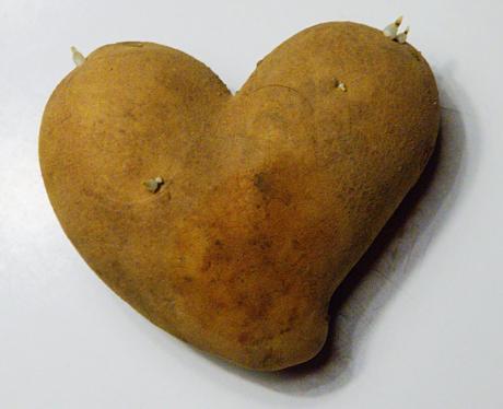 Erdapfel: verliebter