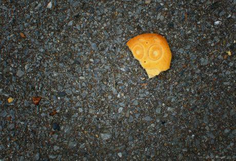 Keks mit Gesicht
