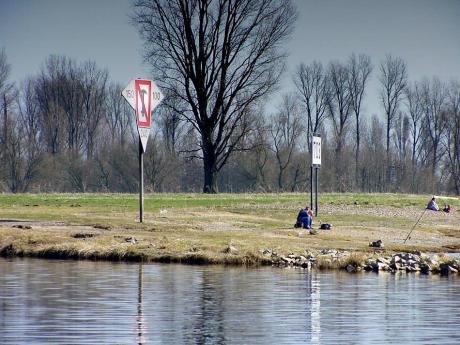 Flusskilometer 703: Wer badet da seinen Wurm?