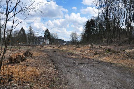 Der ehemalige Lagerplatz: wurde gerodet. Hier soll die neue Fahrbahnbrücke zusammengesetzt werden.