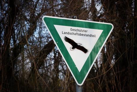 Landschaftsbestandteil: welcher wird hier geschützt?