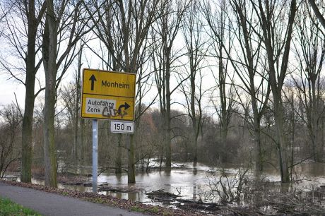 Urdenbacher Kämpe - geflutet