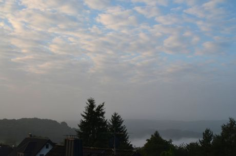 Morgennebel über Pfaffenberg