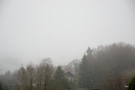 Hästen im Nebel