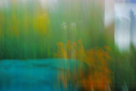 Panning in der Landschaftsfotografie: kwerfeldein.de