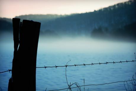 Nebel am Stacheldraht: (weniger Schärfeartefakte?)