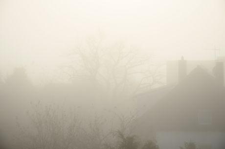 Nebel im November: nichts ungewöhnliches