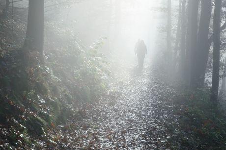 Nebelgänger