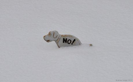 No! - Noch ein bisschen mehr