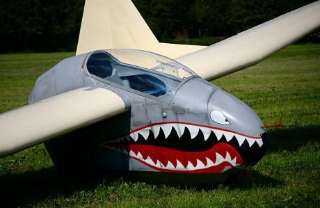 Nurflügler mit Biss: das einsitzige, schwanzlose Segelflugzeug Fauvel AV-36