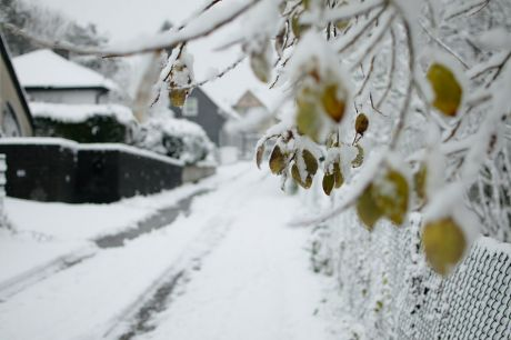 Pfaffenberg on Winter: noch war nichts geräumt