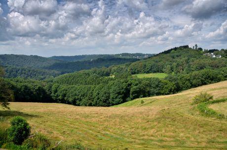 Blick vom Pfaffenberg ins Tal der Wupper: was ein paar Meter Höhe ausmachen!