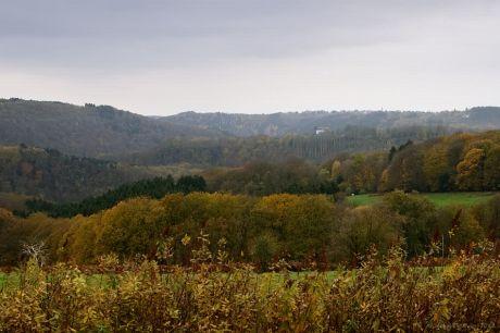 Pfaffenberg, Blick auf Burg Hohenscheid,  Richtung Rheinebene: (Aufnahmedatum 8.11.2012)