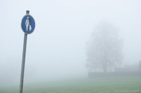 Trotz Nebel