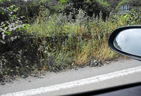 der Mittelstreifen auf einer: deutschen Autobahn