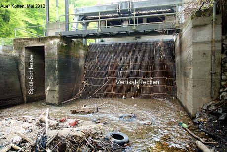 alter Einlauf zum Krafthaus mit vertikal angeordnetem Rechen: (Foto Mai 2010)