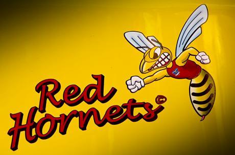 Red Hornets