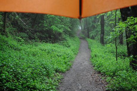 mit dem Regenschirm unterwegs: hatte ich dieses Jahr noch nicht so oft